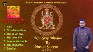 Read more about the article Nonstop Devi Bhajan || Master Saleem || Devotional 2021 || Master Music ||