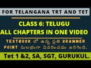 Read more about the article Class 6 TELUGU all lessons explanation for ts tet and trt || ts tet and trt online classes ||