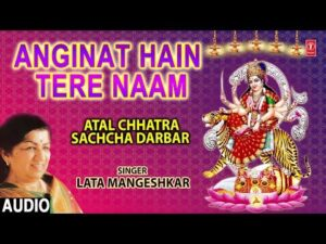 Read more about the article anginat hain tere naam sherovali maa