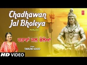 Read more about the article tere sohne sohne shivling ute chdawa jal bholeya