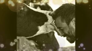 Read more about the article Why cows should be protected (HARE KRISHNA BHAJAN)