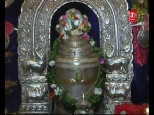 Read more about the article शिवाष्टकम | शिव अष्टकम